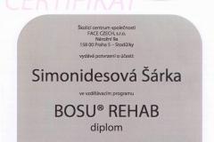 bosu_rehab